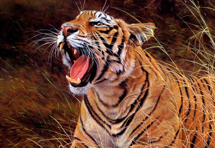 Природные враги тигров