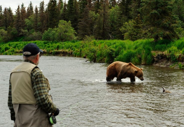 Человек и медведи